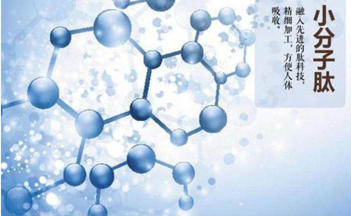 小分子肽能降血糖吗.png