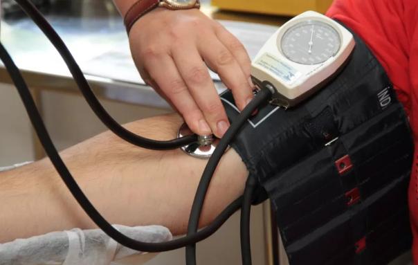苦瓜多肽在降血脂和降血压方面的应用